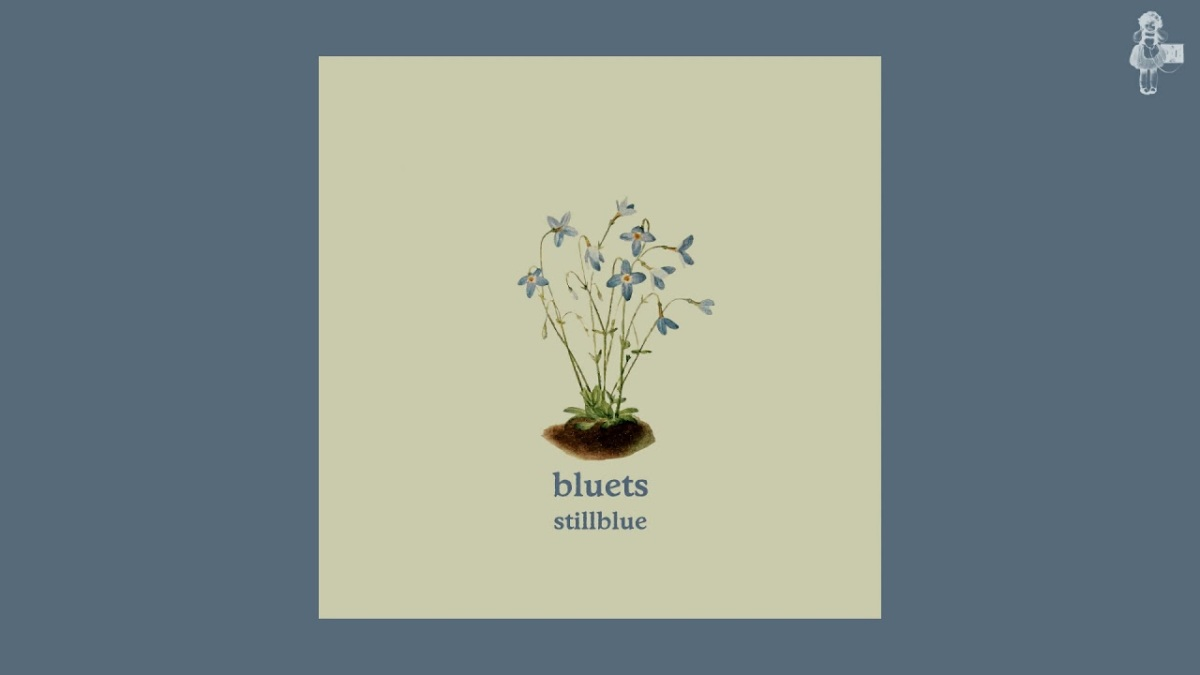 Stillblue Embrace Melancholy as a Young MiamiBand